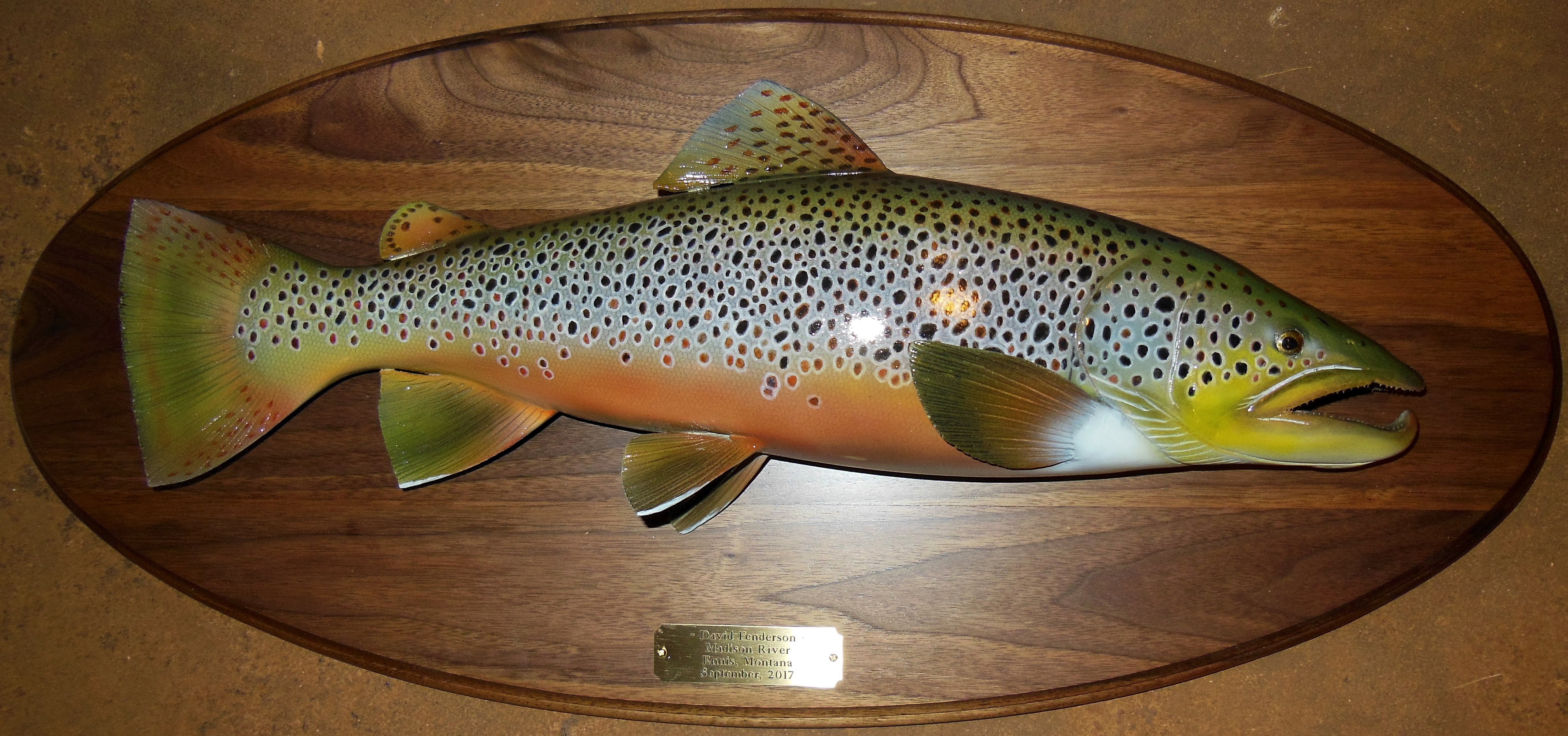 Wall Mount Fish Carvings   Gene Bahr's Wildlife Creations   United