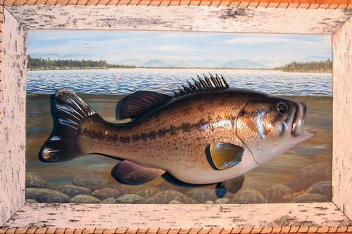 Wall Mount Fish Carvings Gene Bahr S Wildlife Creations United States