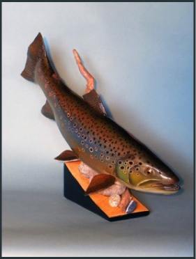 3D Brook Trout
